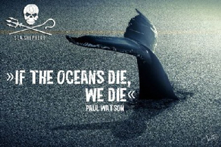if the oceans die we die